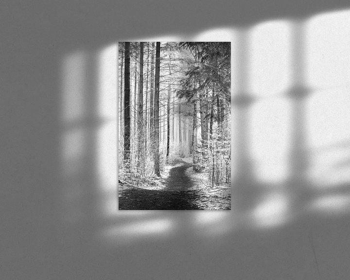 Sfeerimpressie: Paadje door het bos. van Karel Pops