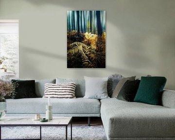 Fougères dorées sur Joris Pannemans - Loris Photography