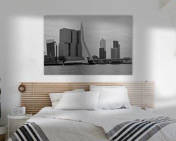 Rotterdam - Erasmusbrug en omgeving - in zwart-wit von Ineke Duijzer