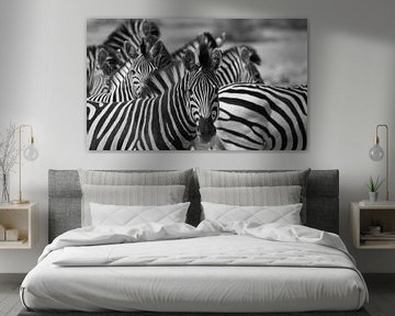 zwart wit zebras in Botswana van Marieke Funke