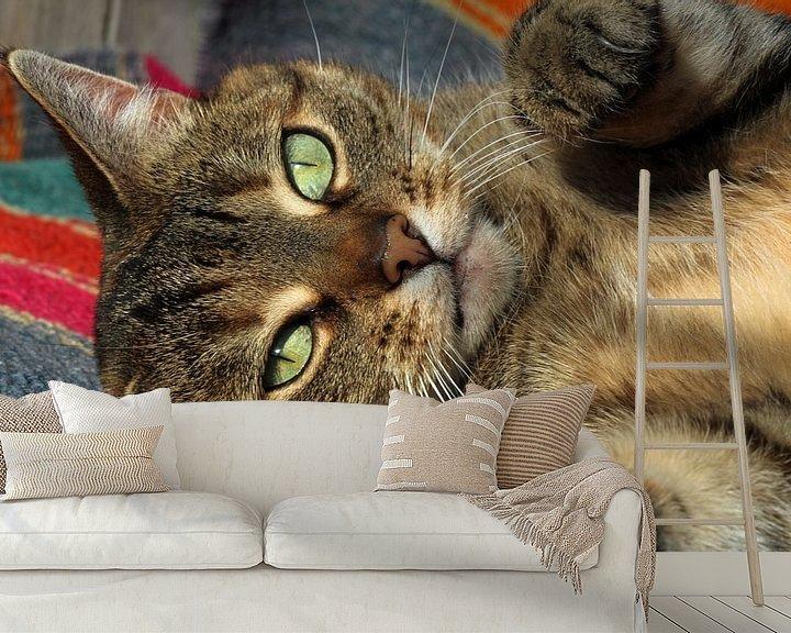 Sfeerimpressie behang: cyperse kat van Marieke Funke