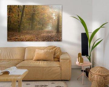 Goldener Oktober, Herbststimmung sur wunderbare Erde