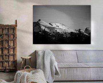 Montagne van Thomas Ruiz