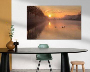 Le soleil d'or se lève sur la lys dans les écluses de Menin - Belgique