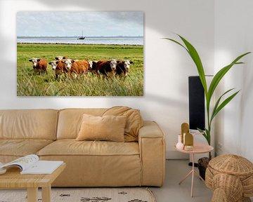 Koeien op Terschelling van Johan Kalthof