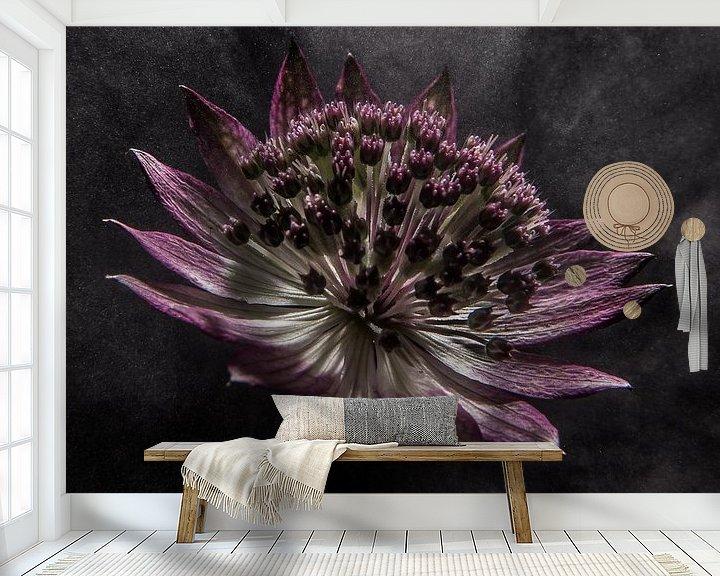 """Beispiel fototapete: Blume in """"dampfendem Licht"""" von Marjolijn van den Berg"""