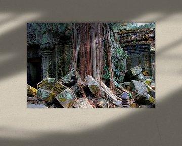 Verlassene Orte: Tempel Ta Prohm, Angkor von Inge Hogenbijl