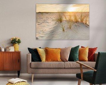 Dünen im goldenen Abendlicht von Ursula Reins