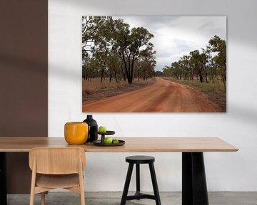 Rode weg in Undara vulkanisch park, Australië. van Kees van Dun