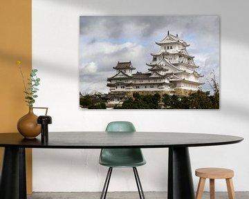 Himeji Castle in Japan van Marcel Alsemgeest