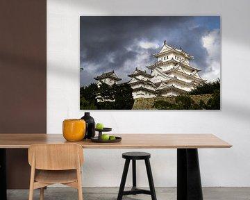 Burg Himeji von Marcel Alsemgeest