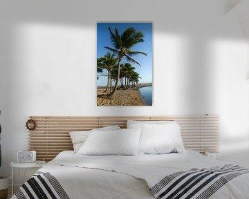 Palmbomen op het strand van Praia de Imbassai, Brazilië. van Kees van Dun