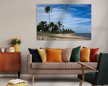 Strand van Praia do Forte, Brazilië. van Kees van Dun