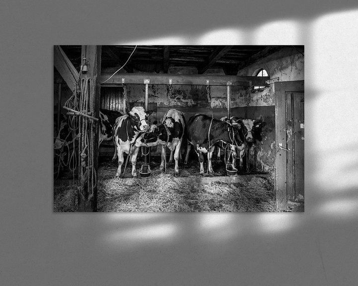 Sfeerimpressie: Koeien in oude koeienstal van Inge Jansen