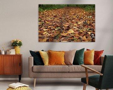 Herfstbladeren van Marcel Alsemgeest