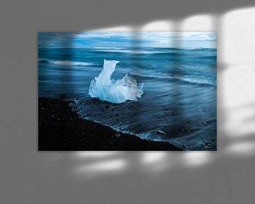 De zwaan van Freek van den Driesschen