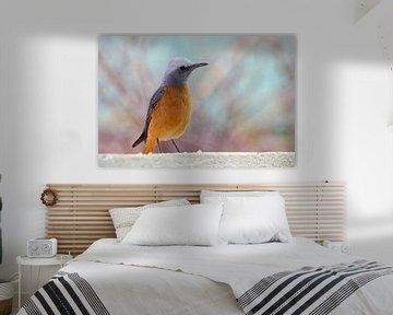 Zangvogel pastelkleur