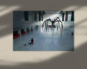 Spinne im Doha-Konferenzzentrum, Katar von Kees van Dun