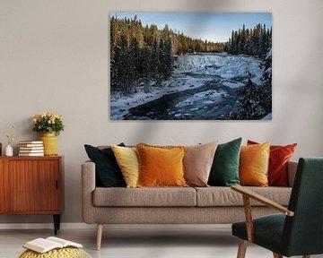 Wells Gray Provincial Park van Luc Buthker