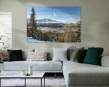 Revelstoke, BC van Luc Buthker