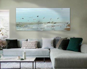 vrij als een vogel, meeuwen op het Noordzeestrand van Georges Hoeberechts