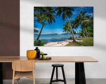 Tropischer Strand auf den Salomon-Inseln von Ron van der Stappen