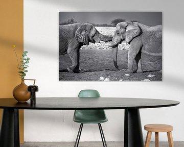 Elefanten-Umarmung