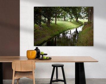Grasland in Twisk, Westfriesland van Kees van Dun