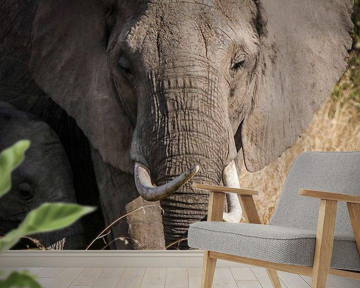 Sfeerimpressie behang: Olifant moeder van Bart Hendriks