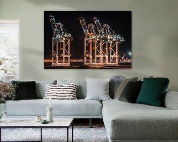 Container Terminal Zeebrugge van Frans Janssen
