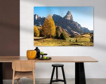 Herfstkleuren op hoogte in de Dolomieten