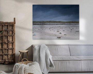 Onheilspellend schelpen strand van Matthijs Noordeloos