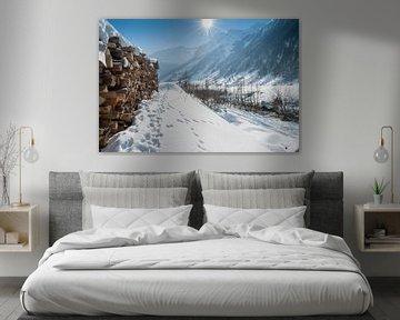 Winter lanschap van Edwin Sonneveld