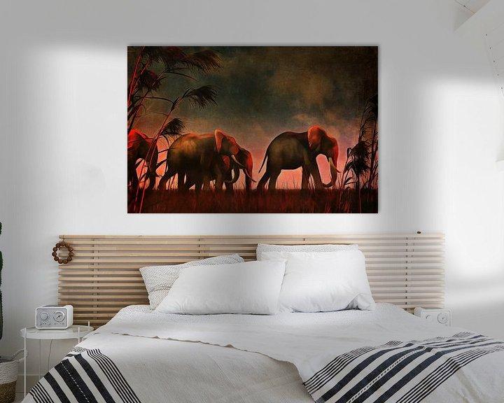 Sfeerimpressie: Dierenrijk – Olifanten lopen samen naar hun drinkplaats van Jan Keteleer