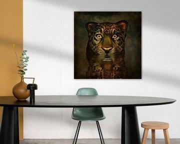 Dierenrijk – Grote kat kijkt je recht in de ogen