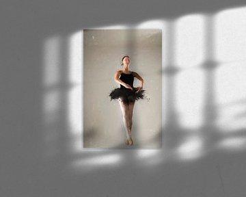Ballerina II von Arjen Roos