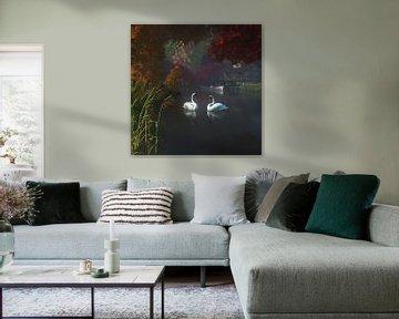 Dierenrijk – Zwanen in een rivier in de buurt van huis van Jan Keteleer