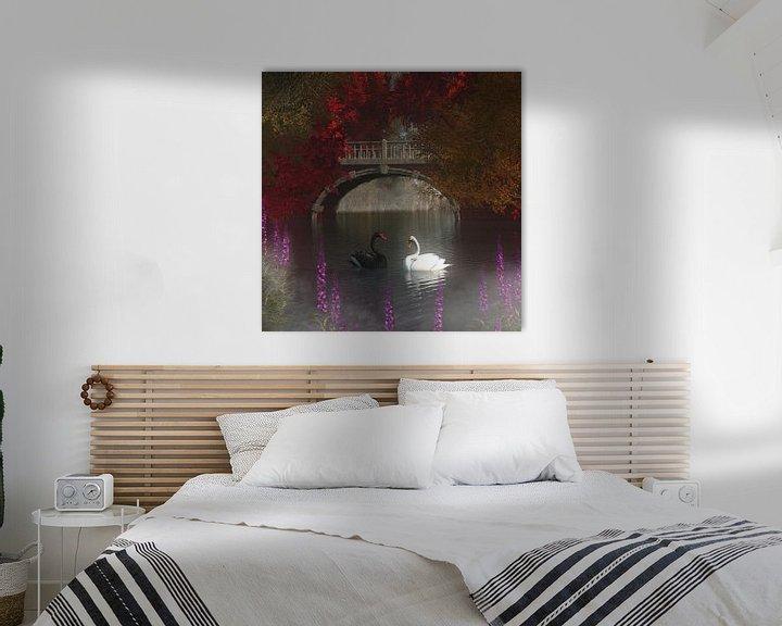 Sfeerimpressie: Dierenrijk – Zwart en witte zwanen van Jan Keteleer