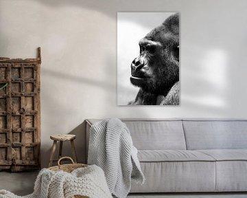 Gorilla zwartwit portret von Dennis van de Water