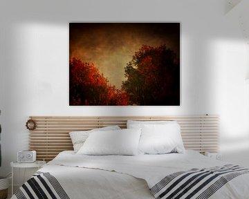 Landschap – Rode berk met getextureerde hemel