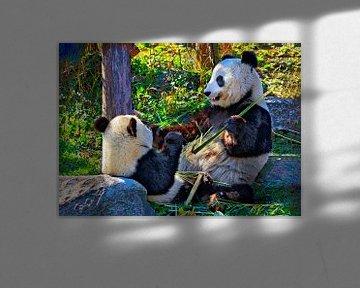 Große Panda von Leopold Brix