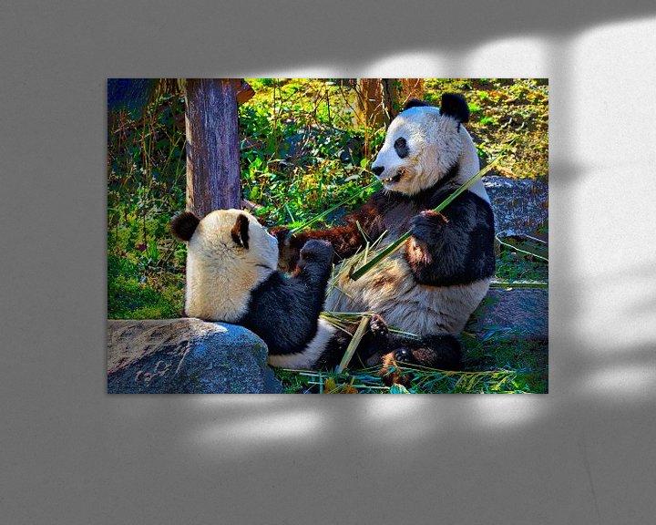 Beispiel: Große Panda von Leopold Brix