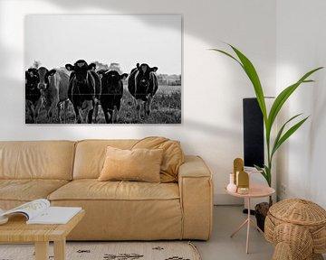 The Cows of 0346 van Maurice Moeliker