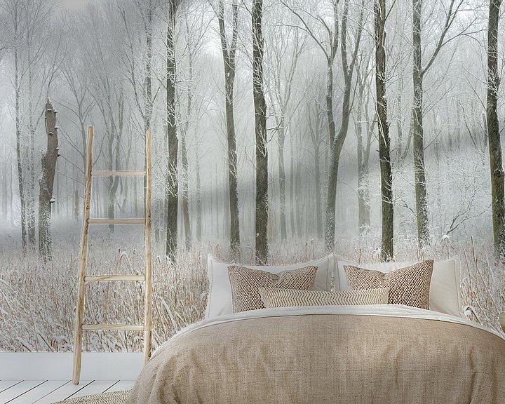 Sfeerimpressie behang: Snow covered swamp forest at Meerbusch,  Lower Rhine Region van wunderbare Erde