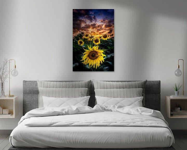 Sfeerimpressie: zonnebloemen van Rubin Versigny
