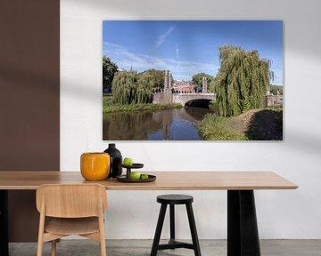 Brug over de Dommel ('s-Hertogenbosch) van Rob van Eerd