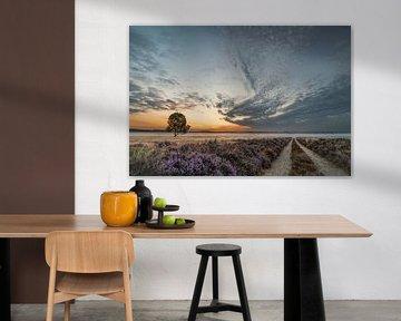 Naar de horizon 2 van Peter Bijsterveld