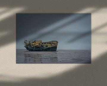 Ballyhack shipwreck van Peter Bijsterveld