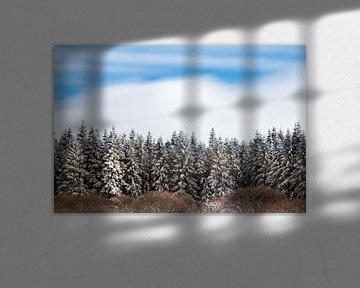 Winter in Belgium van Esther Ehren