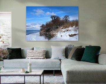 Winter am Hochufer von Ostsee Bilder